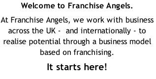 Welcome to Franchise Angels.
